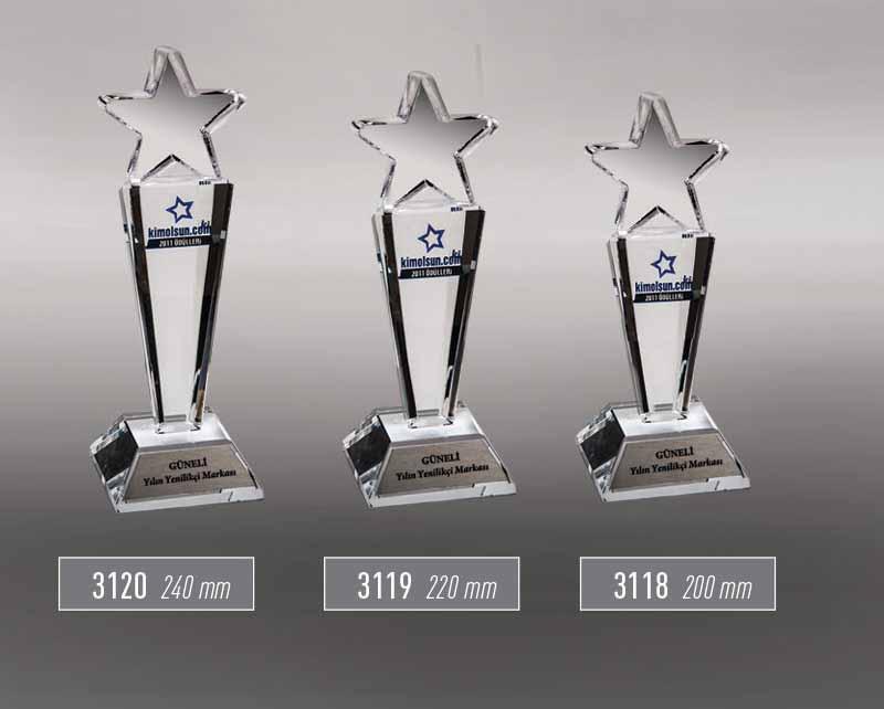 3120 - 3119 - 3118  - Award