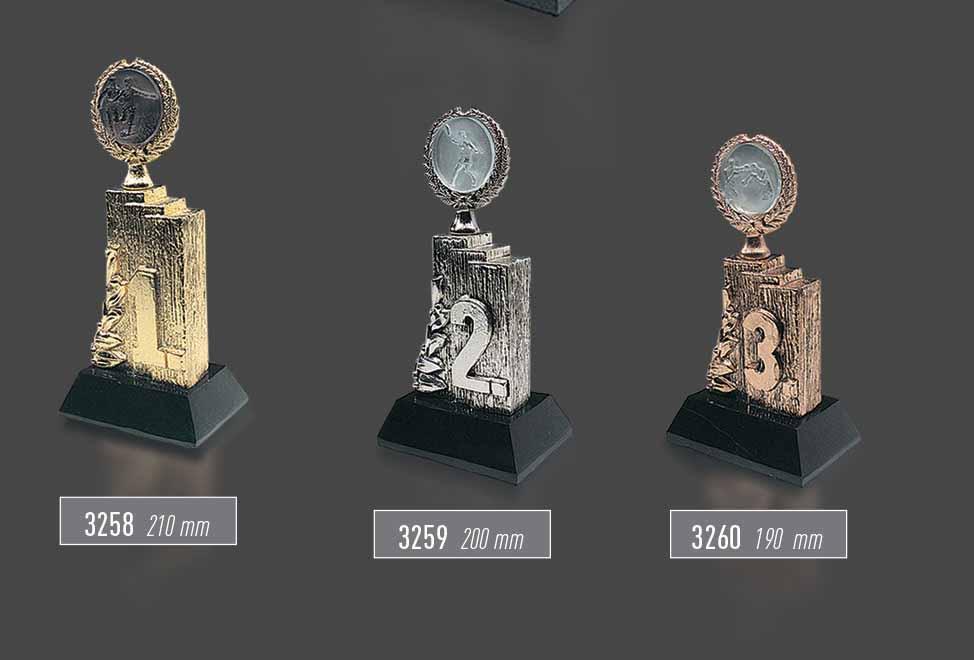 3258 - 3259 - 3260 - Sport Award