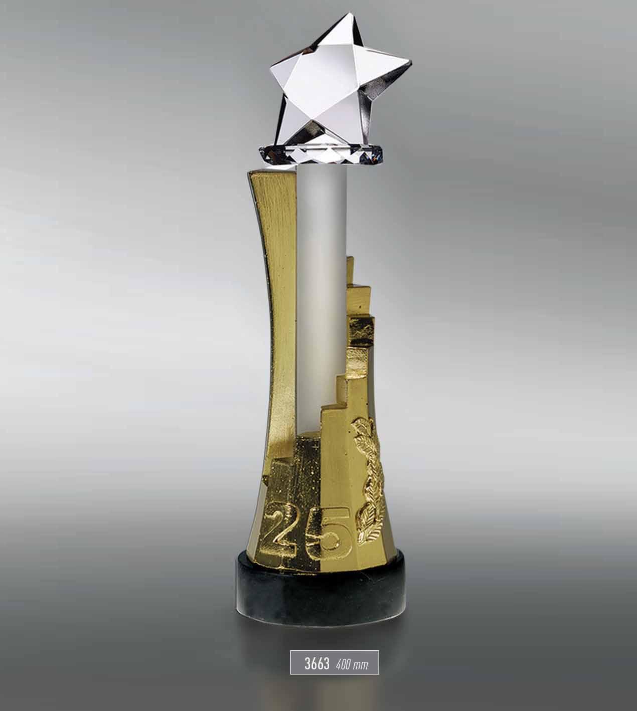 3663 - Award