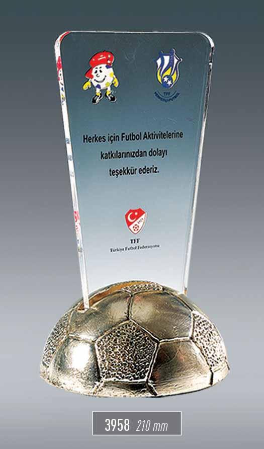 3958 - Sport Award