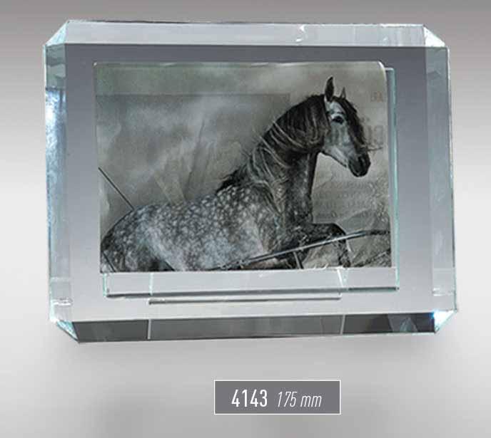 4143 - Gift