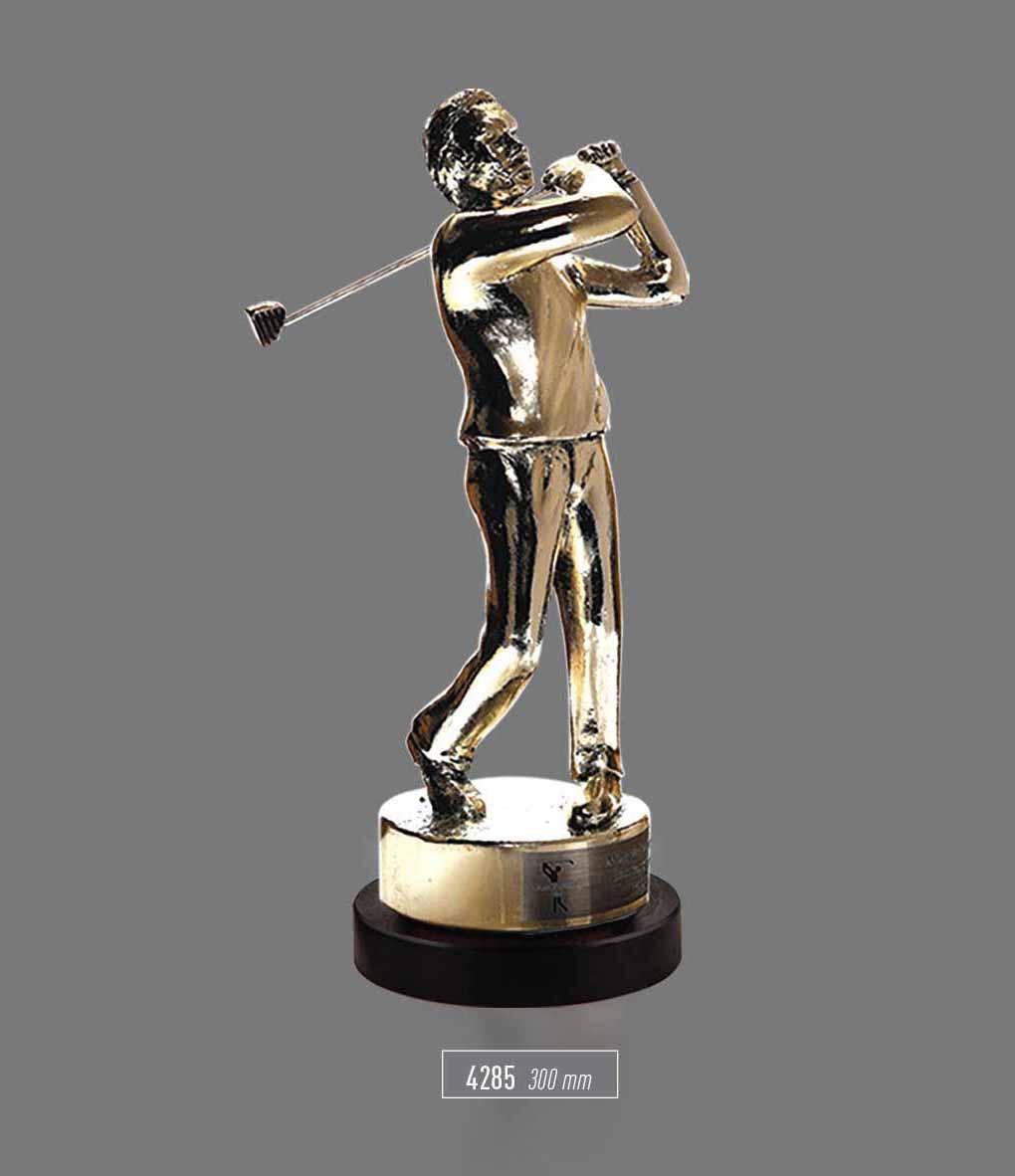 4285 - Sport Award