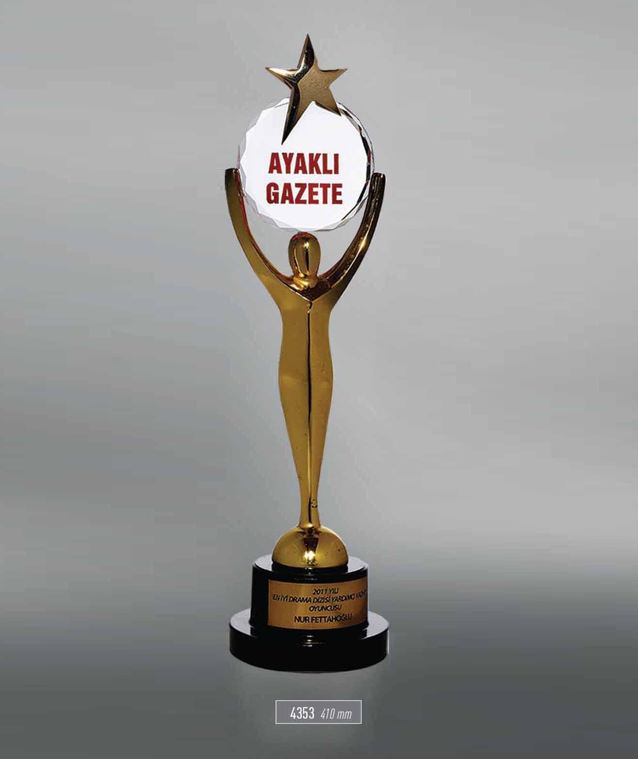 4353 - Award