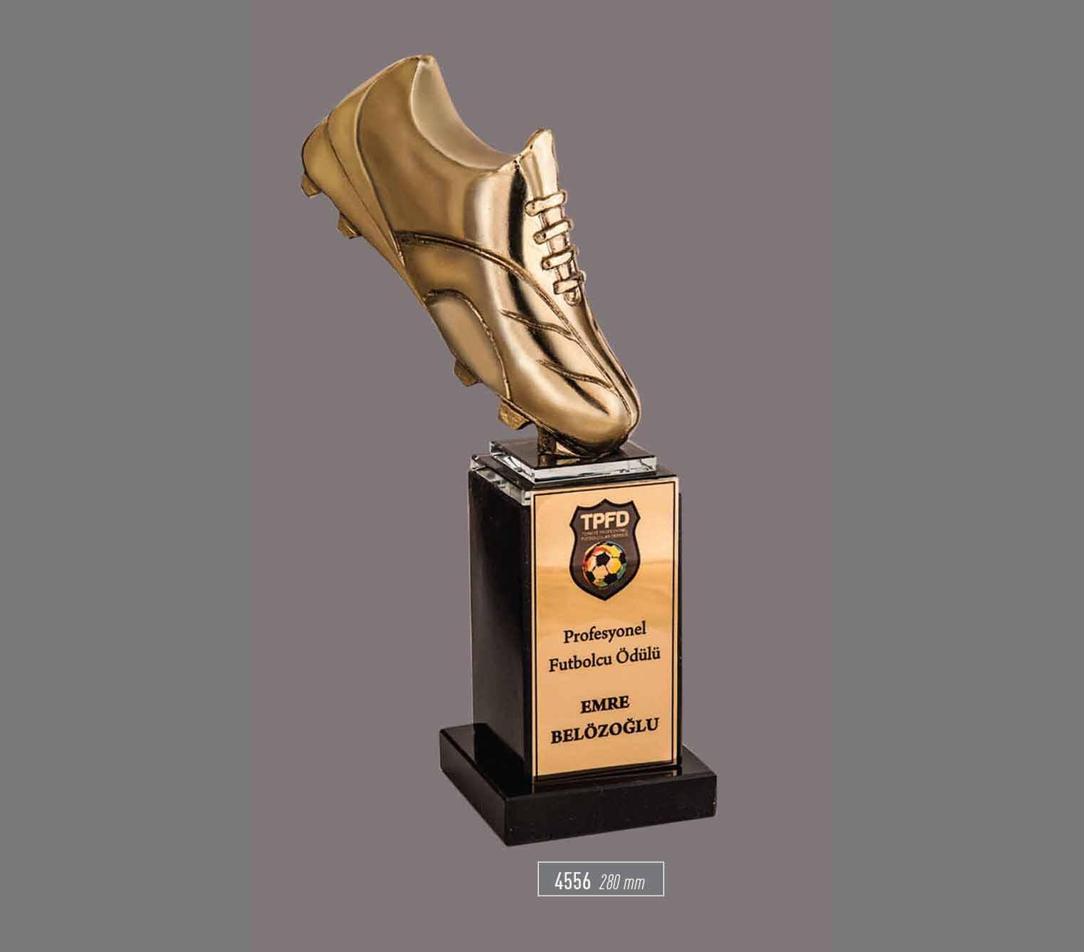 4556 - Sport Award