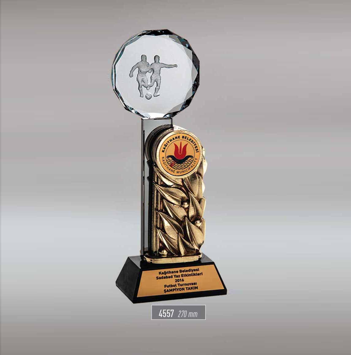 4557 - Sport Award