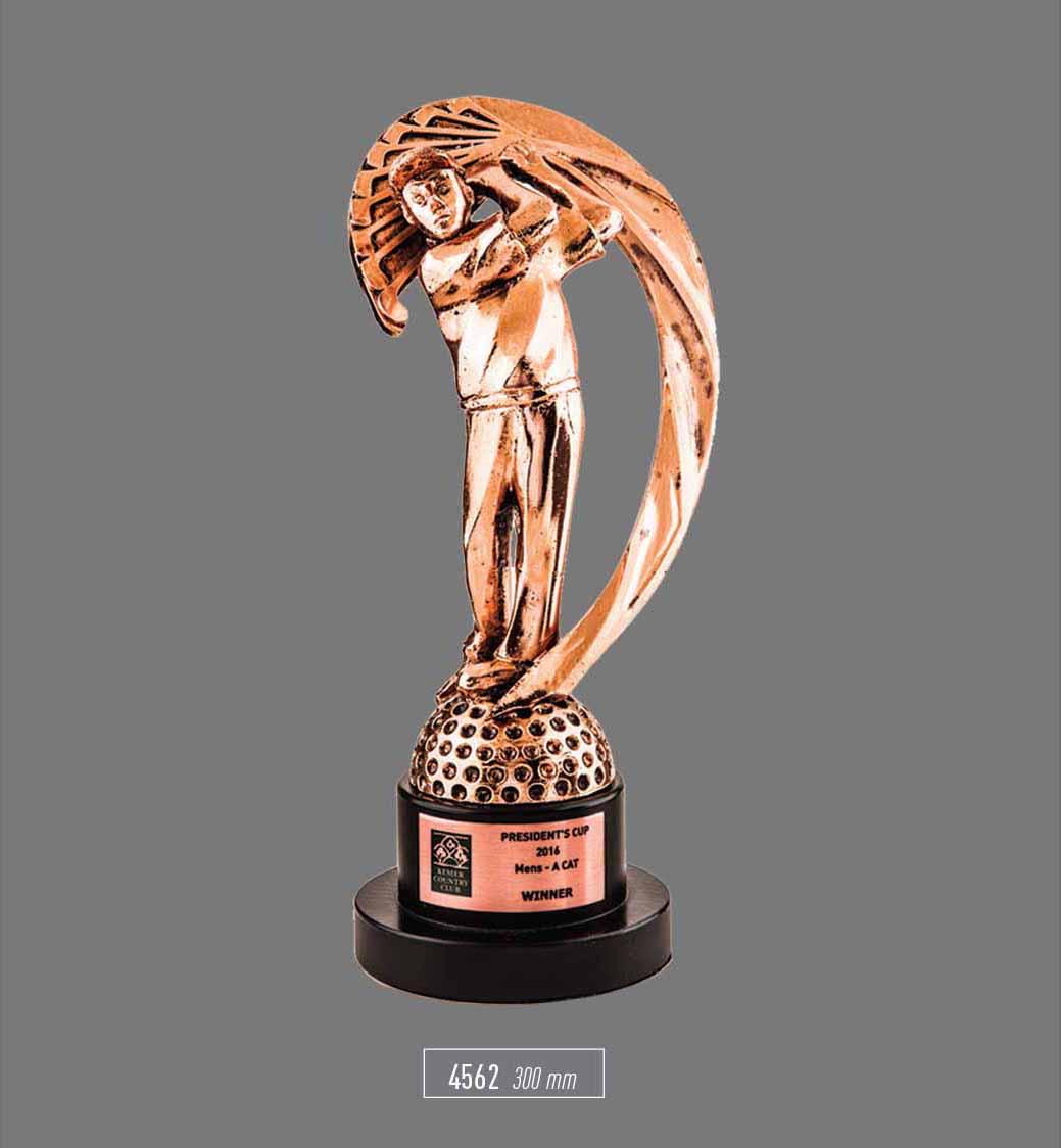 4562- Sport Award