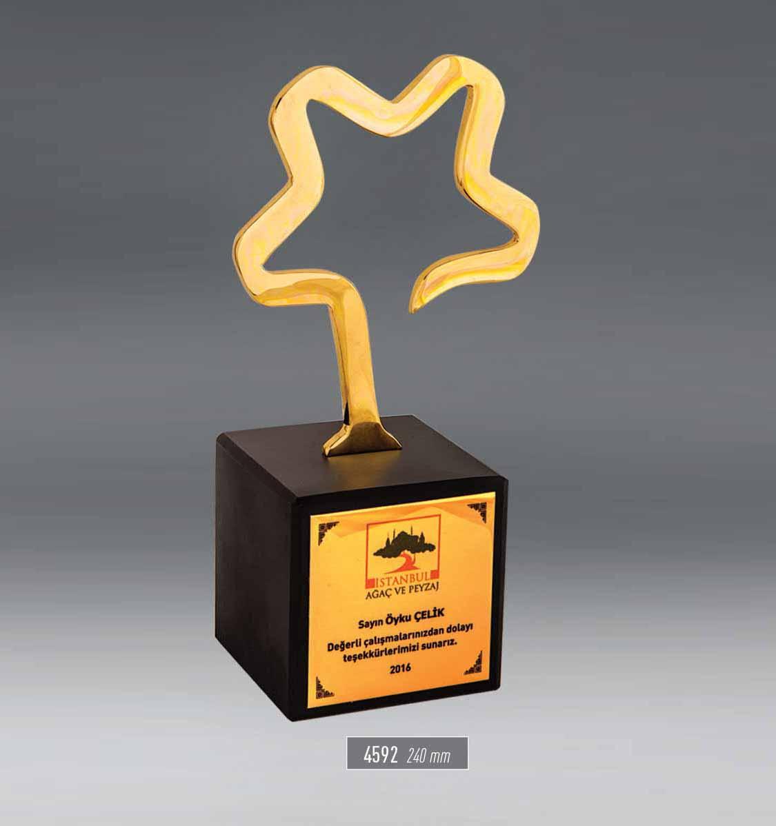 4592 - Award
