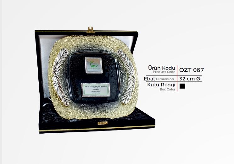 ÖZT 067 Glass Plate Plaquettes