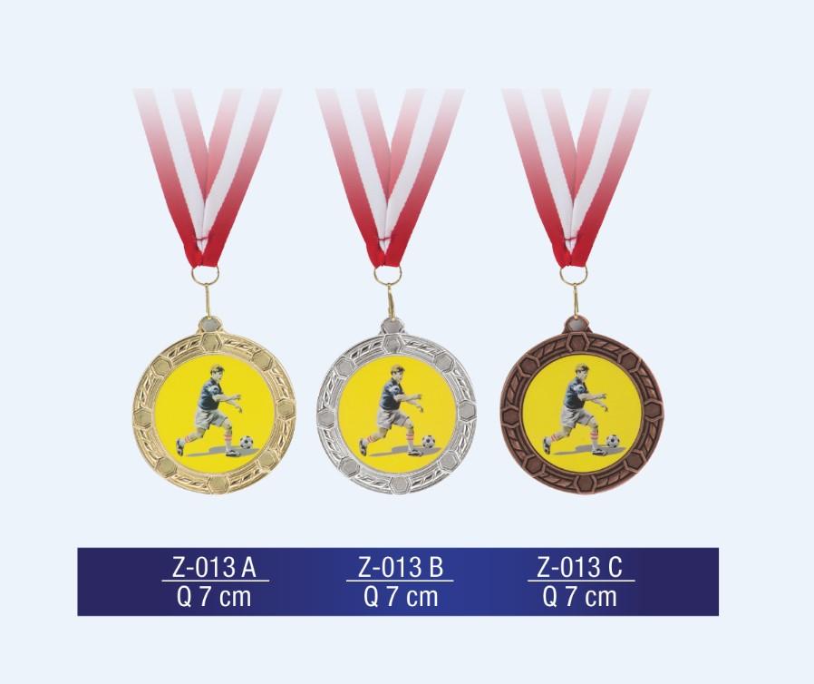 Z-013 Medal