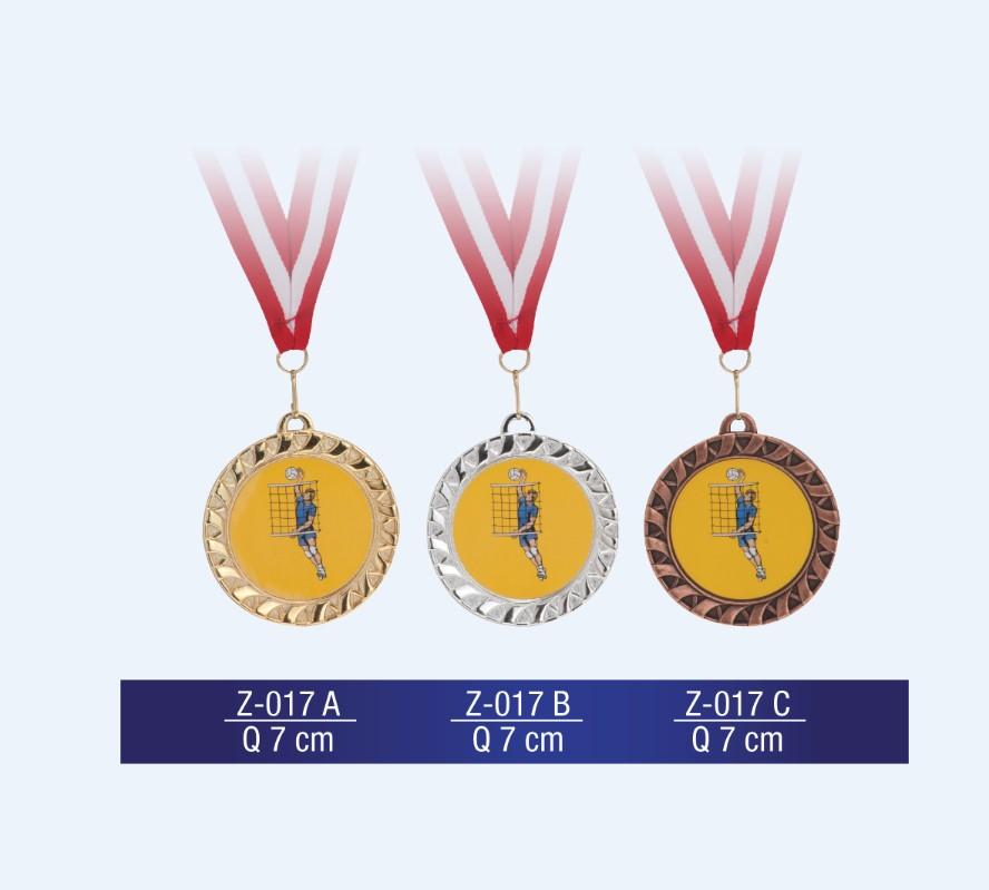 Z-017 Medal